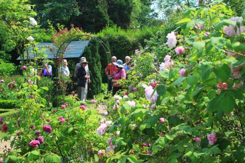 jardins-de-la-mansonniere©J.E.Rubio_.jpg
